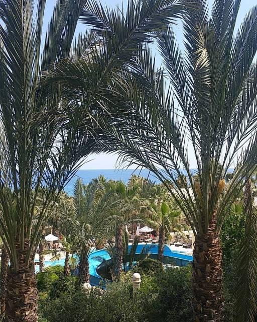 Oscar resort hotel terrace wwwoscarresortcom