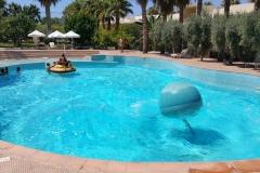 wave-activity-pool