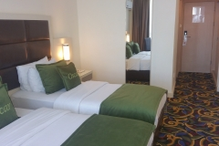 hotel-twin-bed-room-2